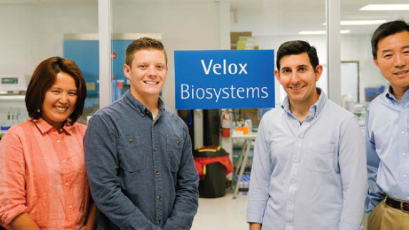 Velox Biosystems: Startup Founded on UCI Technology Continues Growth Trajectory with Rapid Diagnostic Solution for Antibiotic Resistance