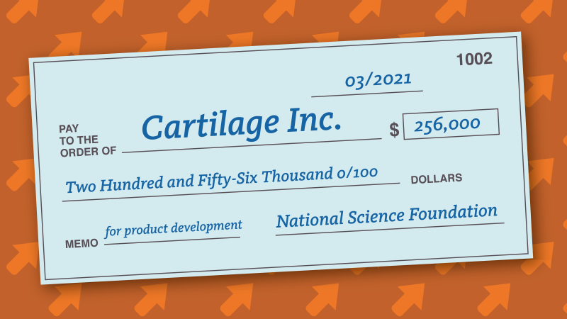Cartilage Inc. Receives Second SBIR Grant for Glue that Holds it All Together